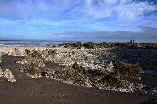 un matin j explore la plage a maree basse