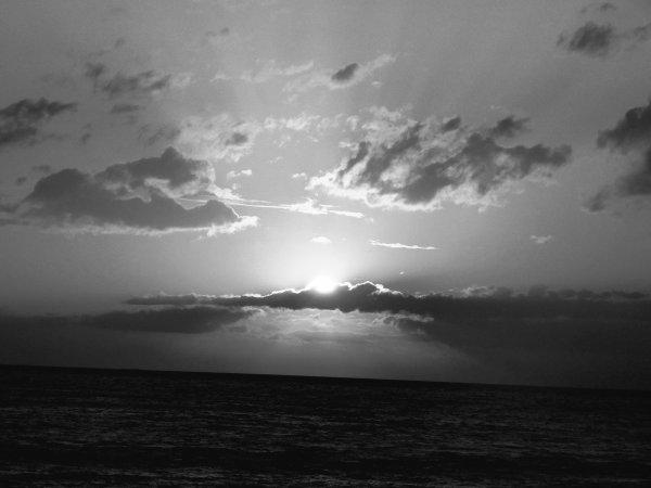 la vie en noir et blanc