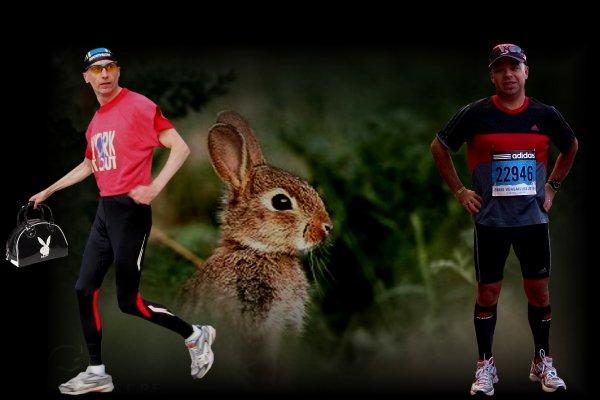 Sportif Animal ....