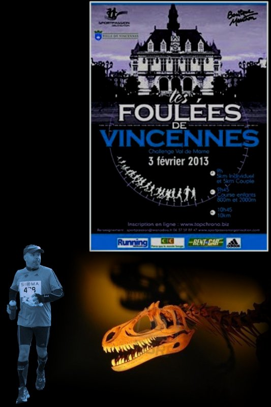 Foulées de Vincennes 2013