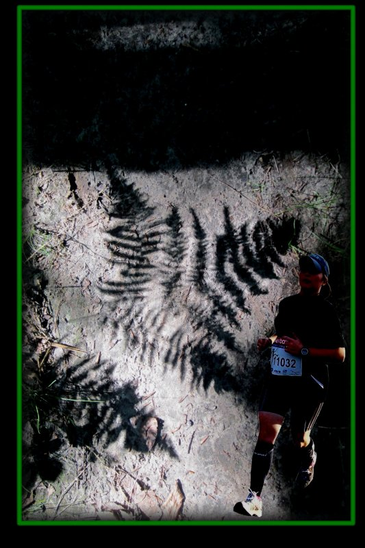 Dans la forêt d'Halatte,  n'y a pas de traîne savate !