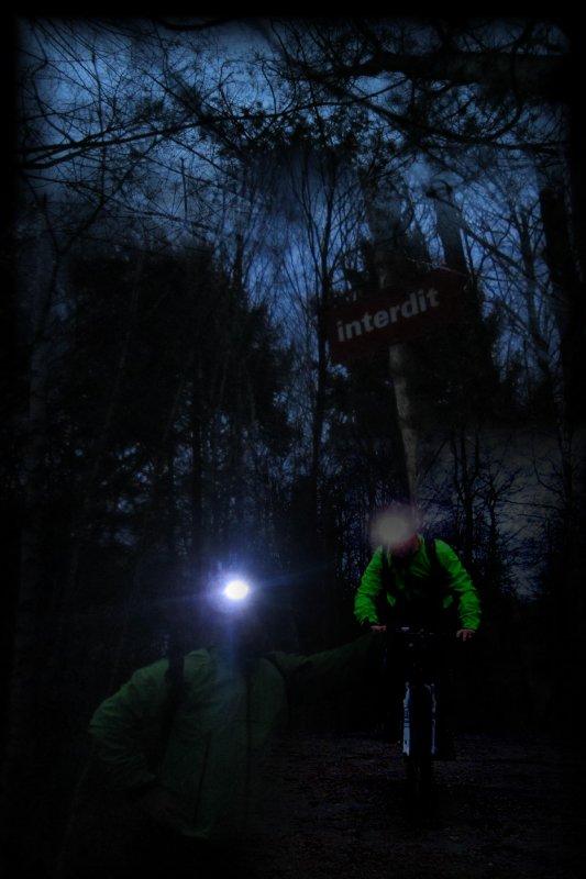 1 janvier 2014, quelque part en forêt d'Halatte,