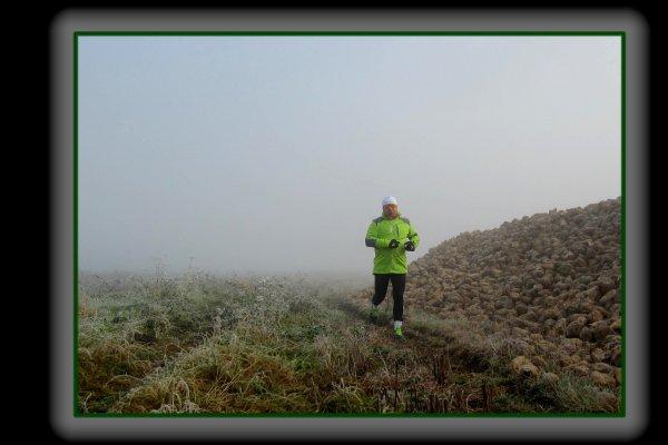 Brouillard du matin ... Février
