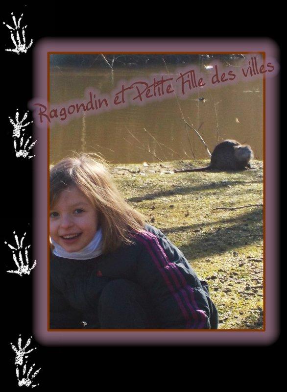 Ragondin et la Petite Fille des villes ...