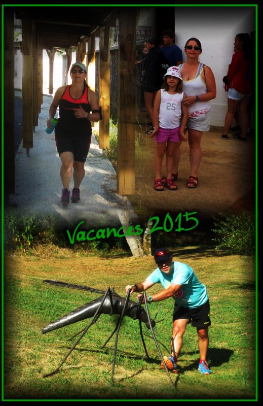 Seyresse dans les Landes, vacances 2015 : 4ème jour