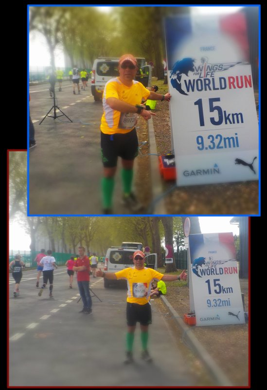 Wings for Life World Run à Rouen 2016 ....