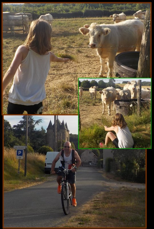 Vacances 2016 : le Limousin : Du 3 Aout !