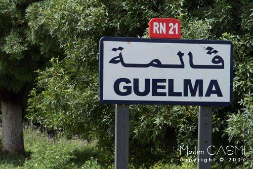 Algérie24000 blèdi  mon amour