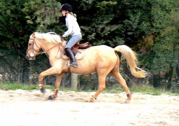 << On peut prétendre maitriser un cheval tant qu'on ne se maitrise pas soi meme >>