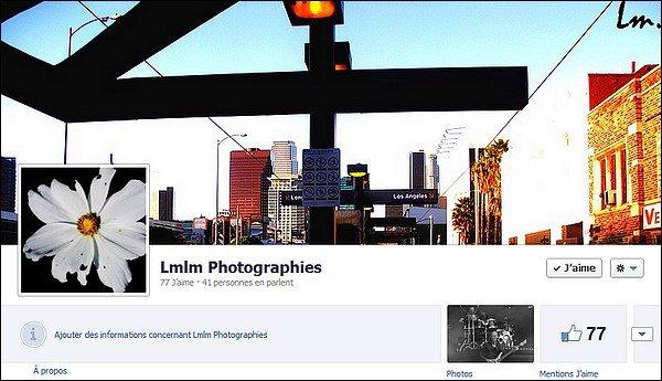 Présentation Lmlm Photographies
