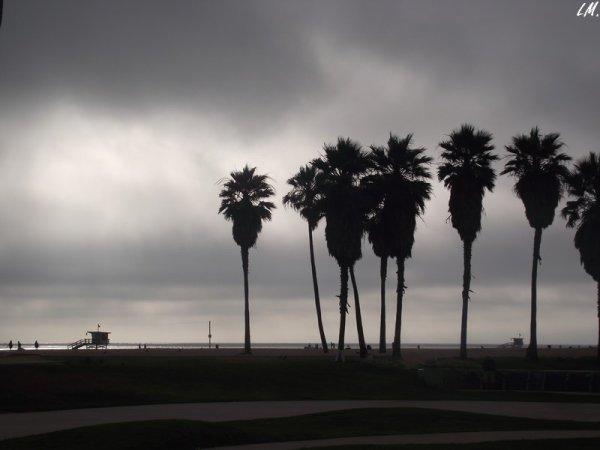 Petite balade à Venice Beach