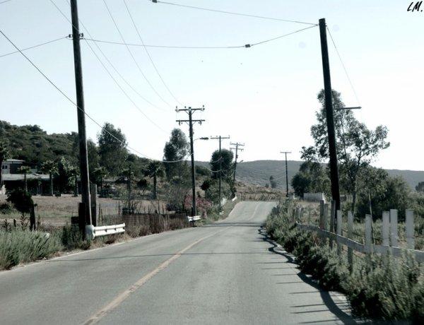 Sur les routes du Mexique