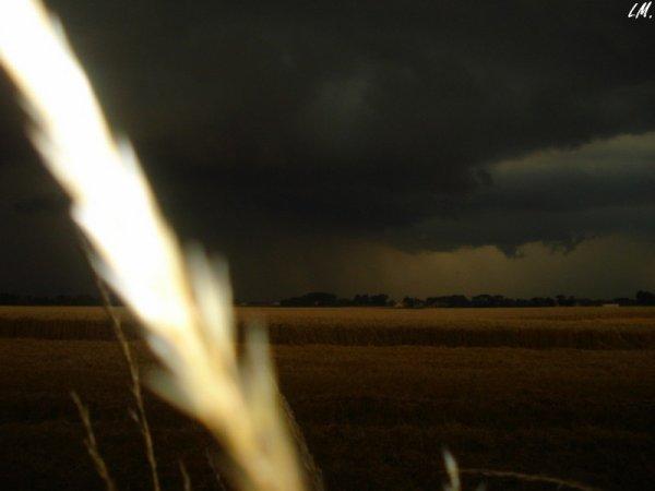 A Rexpoëde, sous un ciel orageux