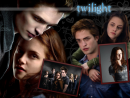Photo de m4ri3-twilight