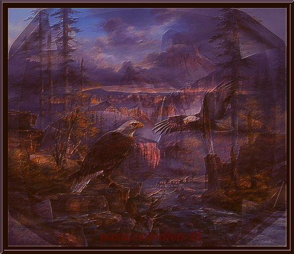 paysage de jour et de nuit