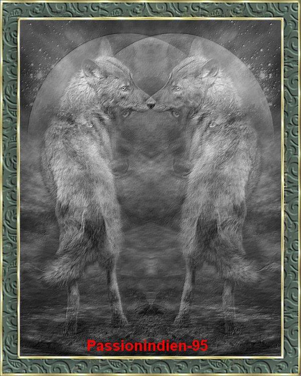 la nuit des louves