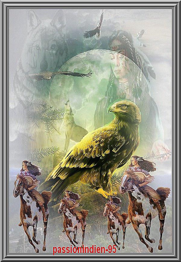 le regard de l'aigle