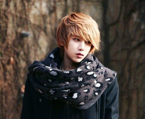 Ulzzang Boy Fiche - Lee Chi Hoon