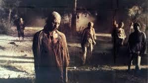 Halloween fury ..... :