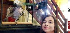 Royaume-Uni: Perroquet sous Prozac après une punition injuste