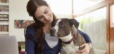 Vieillir moins vite grâce à son chien