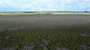 250'000 morts chaque année dus au changement climatique