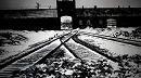 70 ans après sa libération, Auschwitz symbole de mémoire