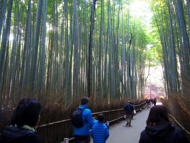 Paysage Japon que j'ai  photographier ^-^