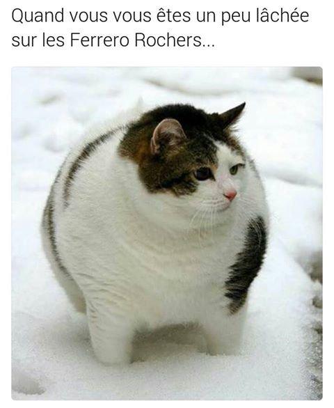 Mais .. les Ferreros c'est la vie ..