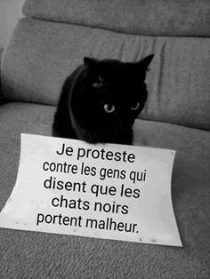 Protestons :'(