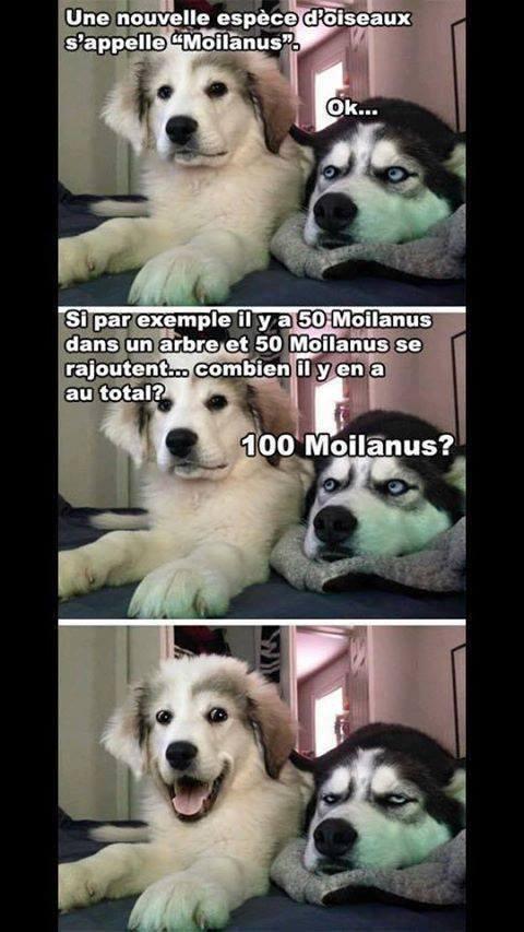 Best blague ever ewe