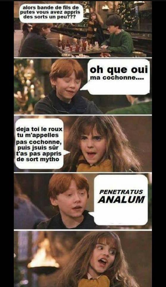 """""""Il n'existe aucun sort que notre chère Hermione ne sais pas faire"""" Rubeus Hagrid Bah maintenant si. e.e"""