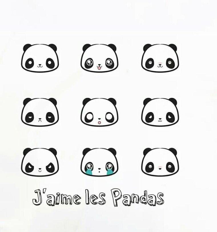 Love panda *o*