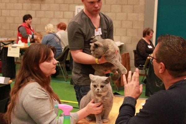 Expo PANNINGEN (NL) 08-11-2015