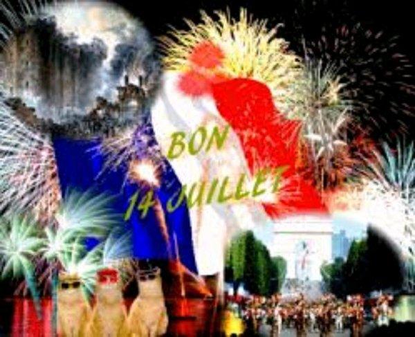 Bonne fête Nationale a tous mes amis bisous