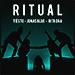 Illustration de 'Ritual (ft. Tiësto, Jonas Blue)'