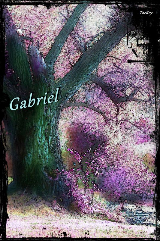 Gabriel   chap 1