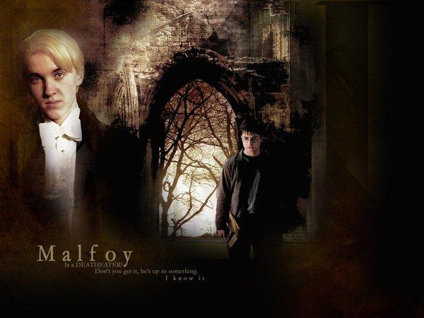 Les fils de Voldemort   chap 3
