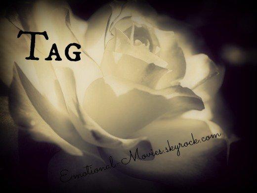 ★ TAG N°1★
