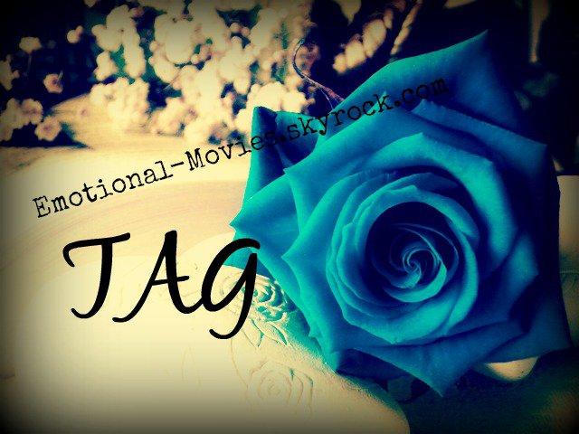 ★ TAG N°4 ★