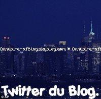 nouveau twitter: Mrs_Elisee