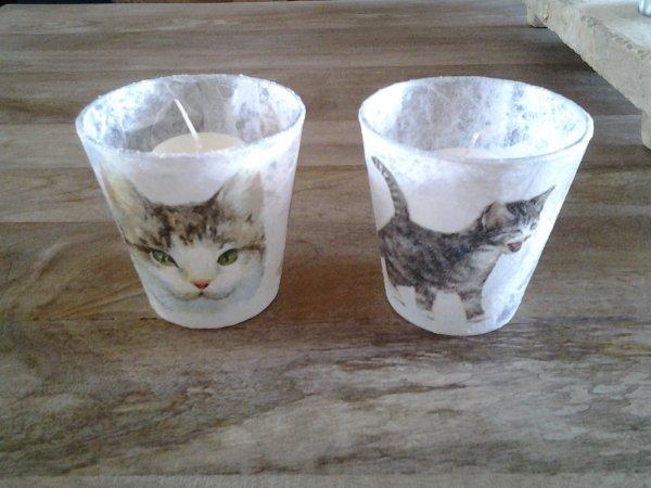 deux photophores chats en faveur SPA