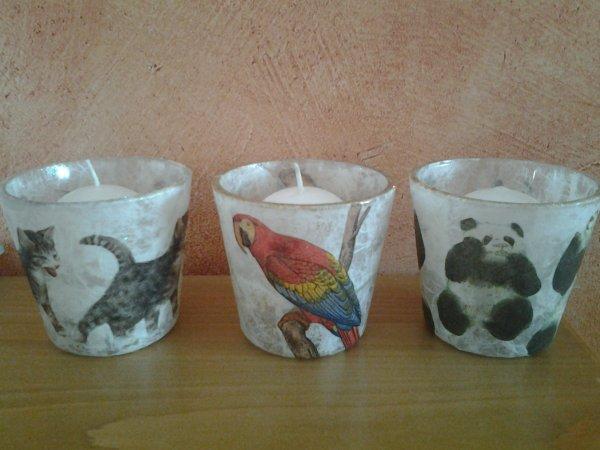 3 photophores chats perroquets pandas pour SPA
