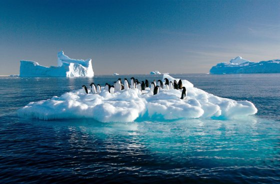 Fonte du permafrost : une bombe à retardement pour le réchauffement