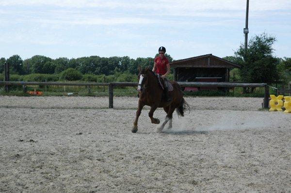 11 Juillet 2010