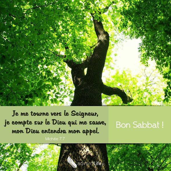Bonjour mes amis(es) passez une très bonne journée et un excellent week-end ! ;) Que Dieu vous garde !