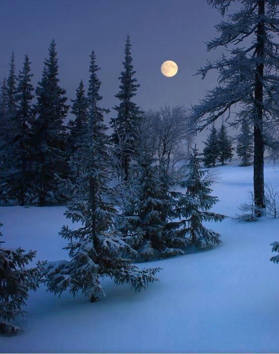 Bonne soirée et douce nuit! ;)