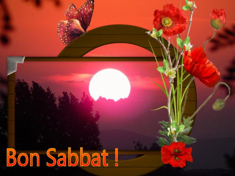 Bon Sabbat...Happy Sabbath...Shabbat Shalom!