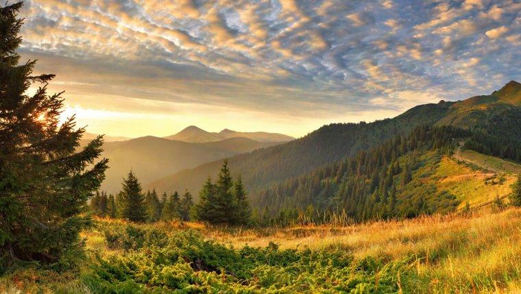 bonjour à tous, passez une excellente journée! ♥ malgré la grisaille ♥ les nuages bas♥ et l'humidité♥