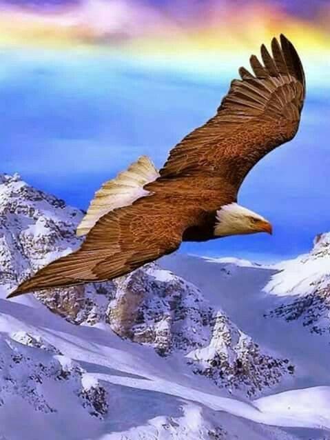 bonjour à tous, passez une excellente journée! ♥ glagla!!! couvrez vous!!!!